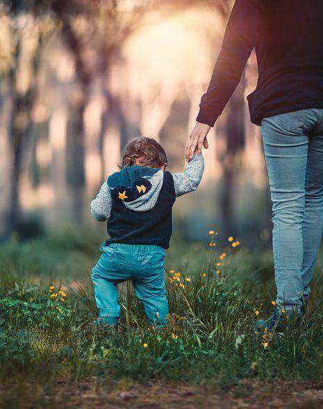 plan de calma padres